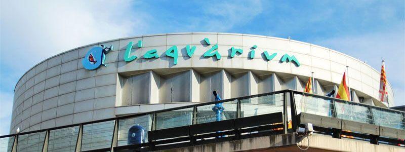 aquarium de barcelone les prix des billets et horaires irbarcelona