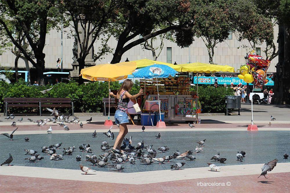 fille jouant avec des pigeons
