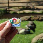 aimant Zoo de Barcelone