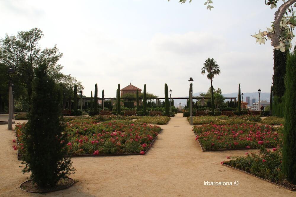 fleurs Jardin Théâtre Grec