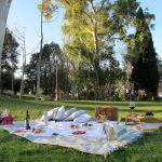 pique-nique dans un parc